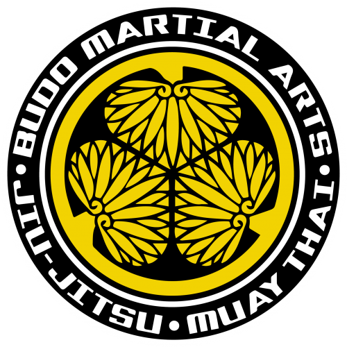 Budo Martial Arts